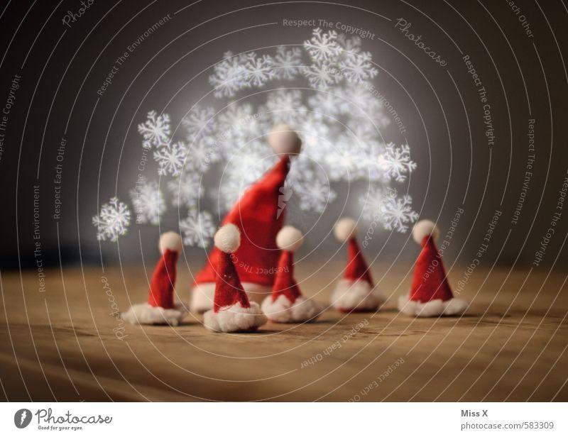 Stars des Tages Weihnachten & Advent Familie & Verwandtschaft Menschengruppe Kindergruppe Menschenmenge Mütze glänzend leuchten Kommunizieren Stimmung Team