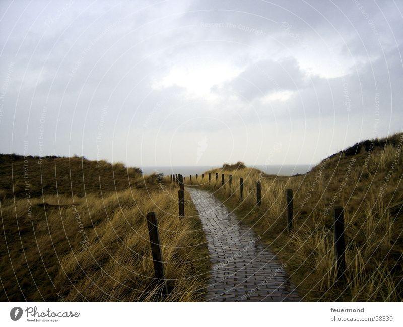 ...und es zogen dunkle Wolken auf... nass Hügel Zaun Unwetter kalt Langeoog Stranddüne Nordsee Himmel Regen Wege & Pfade Gewitter