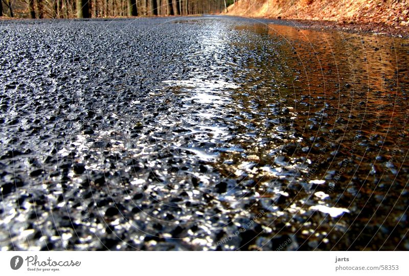 Asphalt Sonne Straße Wege & Pfade Regen nass Verkehrswege Gewitter