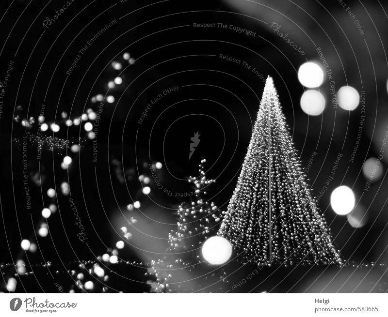 Frohes Fest Weihnachten & Advent schön weiß ruhig schwarz Beleuchtung grau Feste & Feiern Stimmung glänzend Idylle leuchten Design stehen Dekoration & Verzierung ästhetisch
