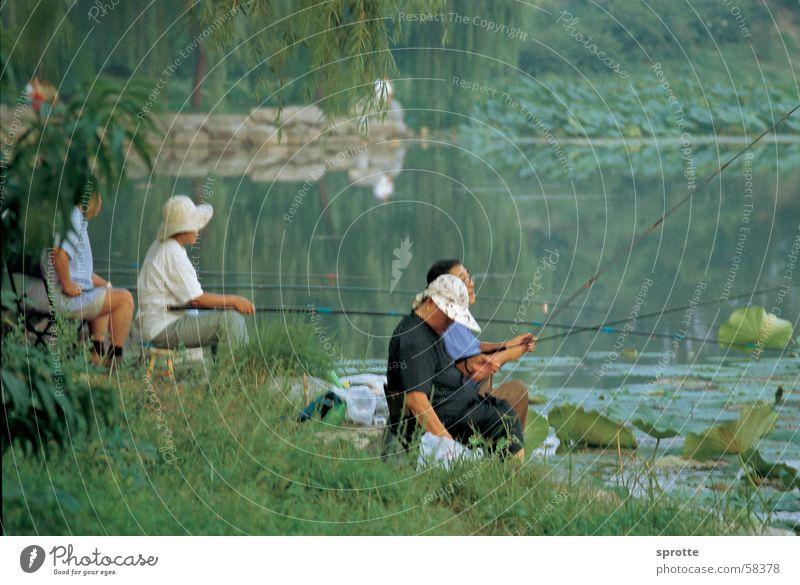 Chinesische Angler im Sommerpalast Beijing ruhig See Stimmung China Angler Peking Sommerpalast