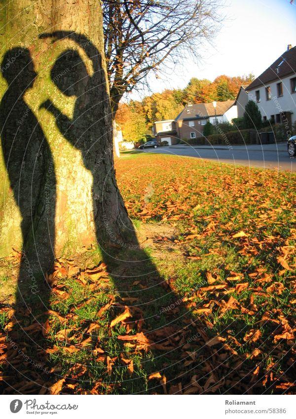 Shadow Warrior Herbst Angst Kunst Abendsonne lethargisch