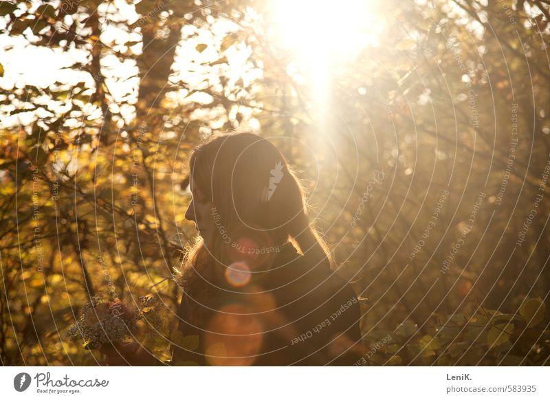 The Sun on my Back Natur Jugendliche Sonne Baum Junge Frau ruhig Wald Wärme Gefühle Herbst Denken Glück Stimmung frei Warmherzigkeit beobachten