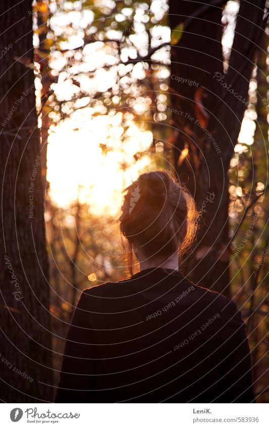 Fallen Mensch Natur Jugendliche schön Baum rot Junge Frau gelb Wärme Herbst Haare & Frisuren Denken träumen Stimmung orange gold