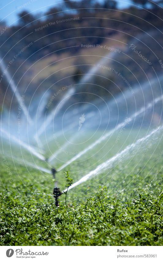 Sprenger Garten Gartenarbeit Bauernhof Landwirt Heu Bewässerung Sprinkleranlage Beregnungsanlage Rasensprenger Gartensprinkler Wasserkraftwerk Umwelt Landschaft
