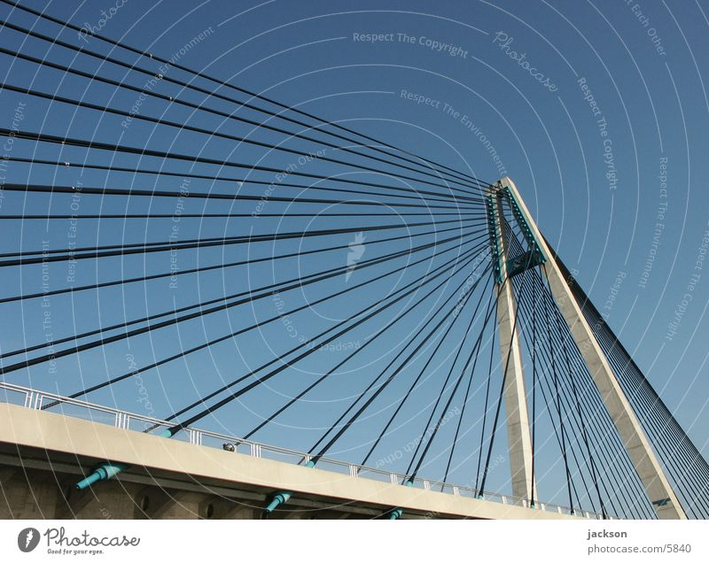Stahlseilbruecke Verkehr Brücke Donau Drahtseil