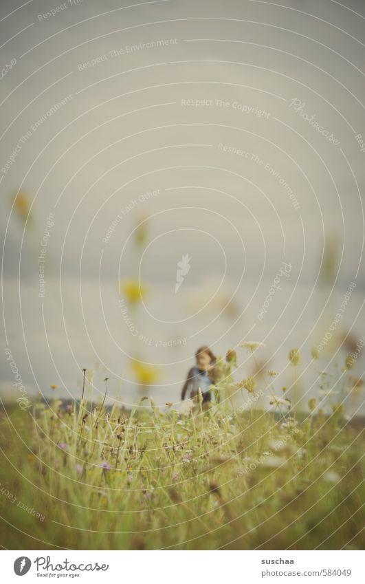 wiese Mensch Kind Himmel Natur grün Sommer Mädchen Wolken Umwelt Wiese feminin Herbst Gras Haare & Frisuren Freiheit Gesundheit