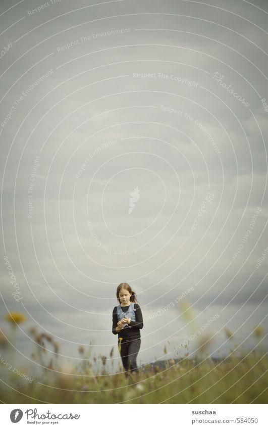 näherkommen Mensch Kind Himmel Natur Sommer Landschaft Mädchen Wolken Umwelt Wiese feminin Herbst Gras natürlich Gesundheit Wetter
