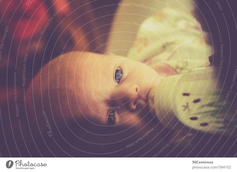 Baby mit offenen Augen wird mit Fläschchen gestillt Mensch Kind ruhig Freude Gesicht Stil Glück Essen Kopf Häusliches Leben Zufriedenheit Kindheit Zukunft