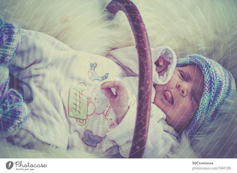 Baby im Korb auf Schafsfell Körper 1 Mensch 0-12 Monate Holz schlafen schreien Glück natürlich nerdig neu Neugier niedlich saftig Sauberkeit blau geduldig ruhig