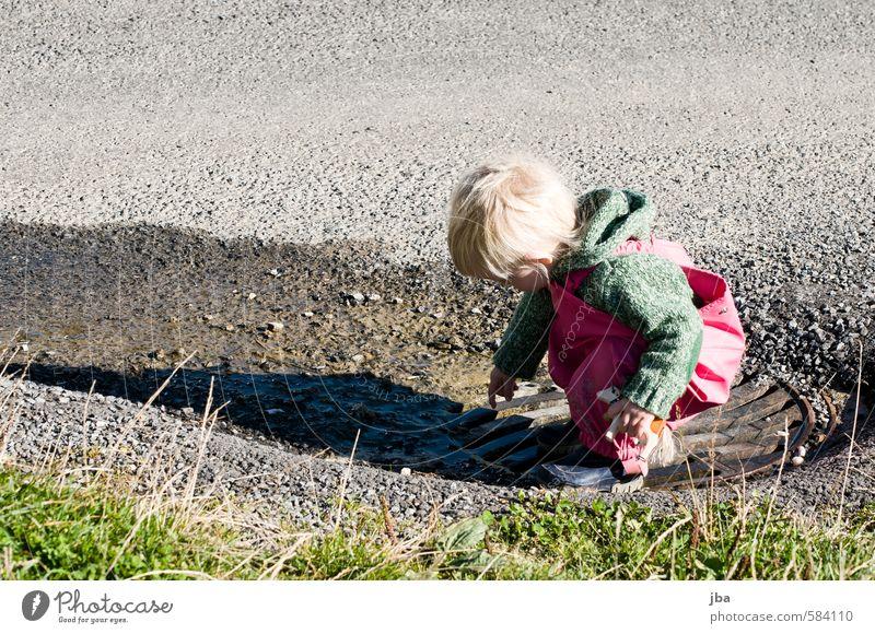 experimentieren Kind Mädchen Leben Straße feminin Herbst Spielen Zufriedenheit wandern Schönes Wetter Ausflug lernen Neugier Wohlgefühl entdecken Kleinkind