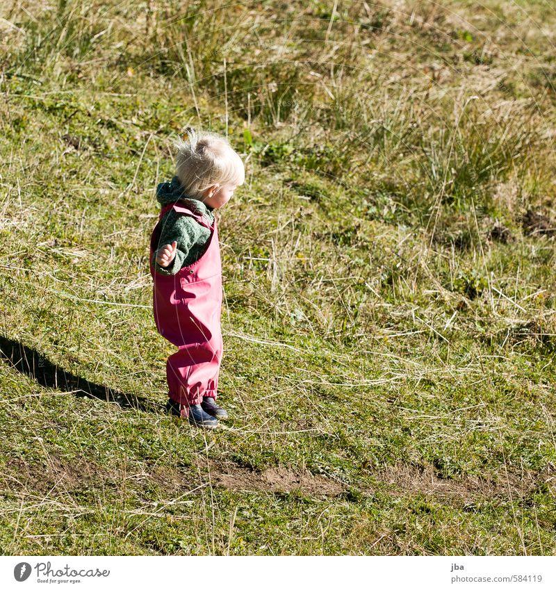 Herbstkind Mensch Kind Sommer Mädchen Berge u. Gebirge Leben Wiese feminin Wege & Pfade Gras Denken Zufriedenheit Kindheit stehen wandern