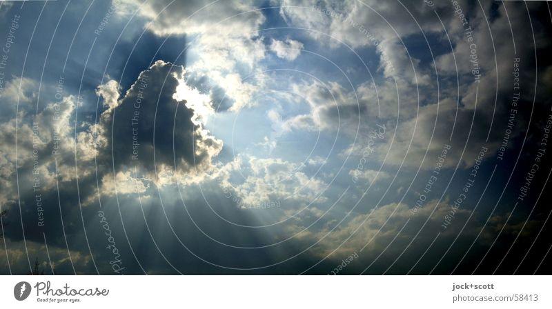 Sonnenversteck (to play hide-and-seek) blau Erholung ruhig dunkel natürlich Freiheit oben hell Luft leuchten Vergänglichkeit Schönes Wetter Freundlichkeit Pause