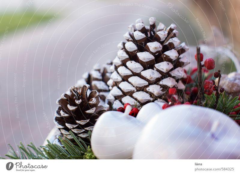 ein frohes Fest Dekoration & Verzierung einzigartig stachelig grün rot weiß ästhetisch Tannenzweig Zapfen Apfel Gesteck Tannennadel Farbfoto Außenaufnahme