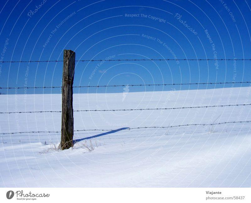 ausgebüxt Natur Himmel weiß blau Winter ruhig kalt Schnee Wiese Deutschland Hintergrundbild Horizont Grenze gefroren Zaun gefangen