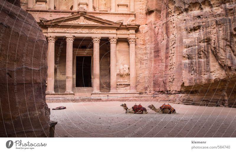 Ferien & Urlaub & Reisen alt Stadt schön rot gelb Gebäude Architektur Stein Felsen Kunst rosa Fassade Tourismus Kultur historisch