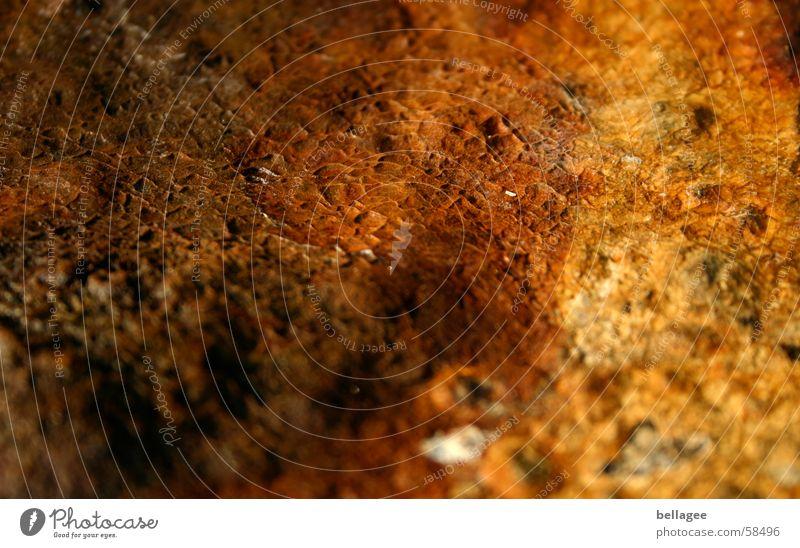 Rinde braun Oberfläche Baumrinde