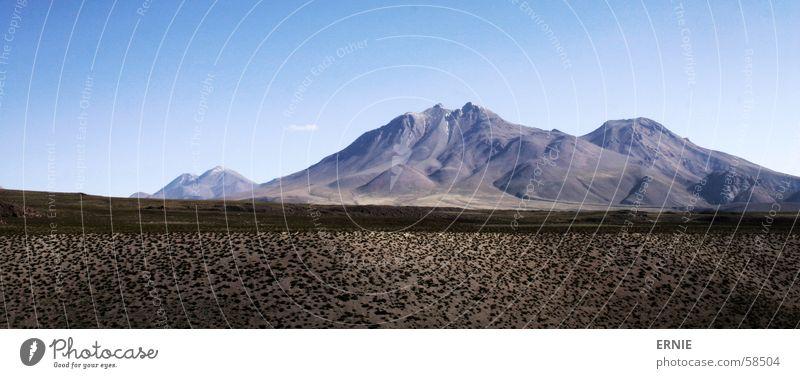 Dünne Luft Natur Himmel blau Pflanze Ferien & Urlaub & Reisen Berge u. Gebirge Luft dünn Chile