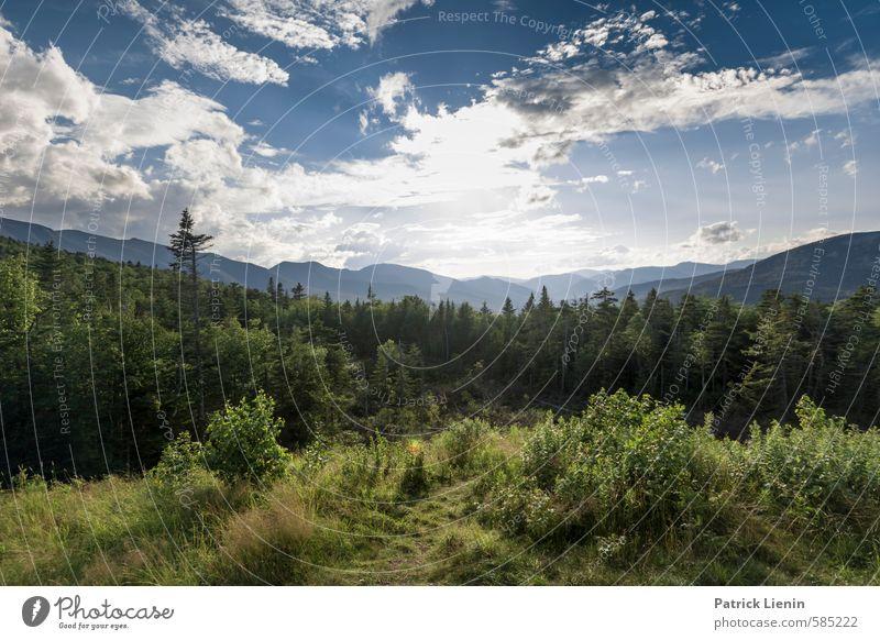 Much More Than That Himmel Natur Ferien & Urlaub & Reisen Pflanze Sommer Sonne Landschaft Wolken Ferne Wald Umwelt Berge u. Gebirge Herbst Freiheit Erde Wetter