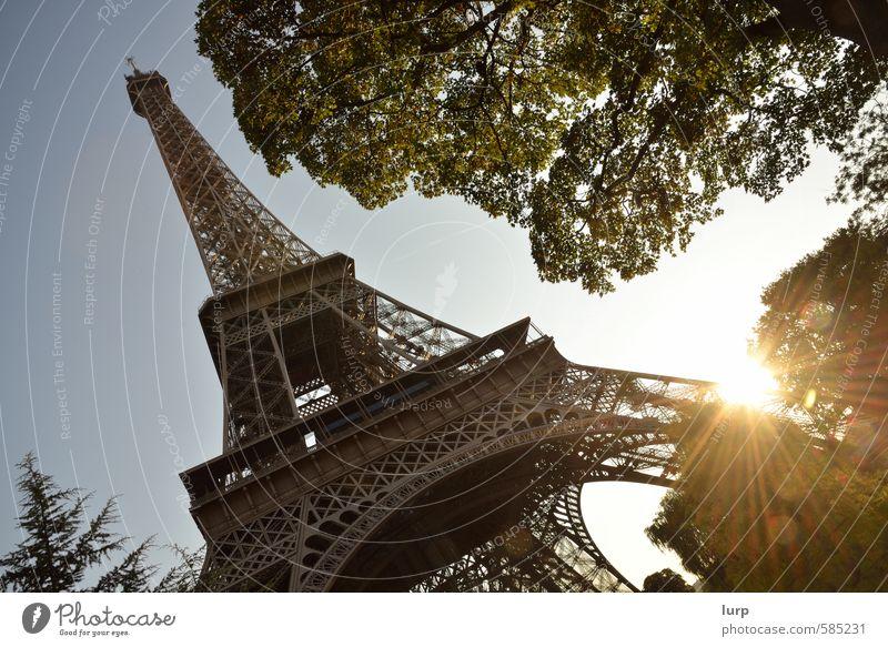 Der Klassiker Himmel Ferien & Urlaub & Reisen Stadt Pflanze Sommer Sonne Baum Architektur Schönes Wetter Turm Bauwerk Wolkenloser Himmel Frankreich Paris