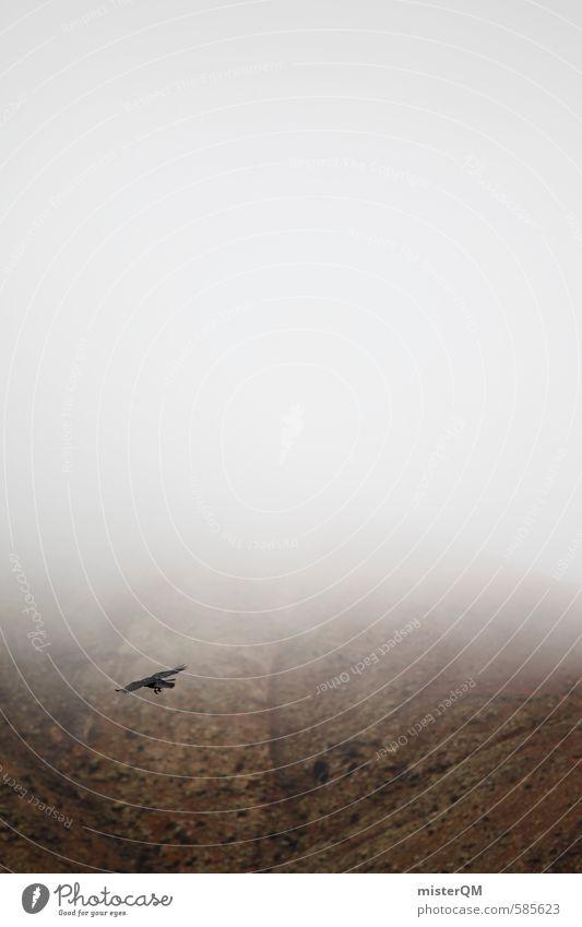 I.love.FV XXXIV Kunst ästhetisch Zufriedenheit dunkel Rabenvögel Nebel Nebelschleier Nebelmeer Nebelstimmung Nebelfeld Vogel Vogelperspektive Farbfoto