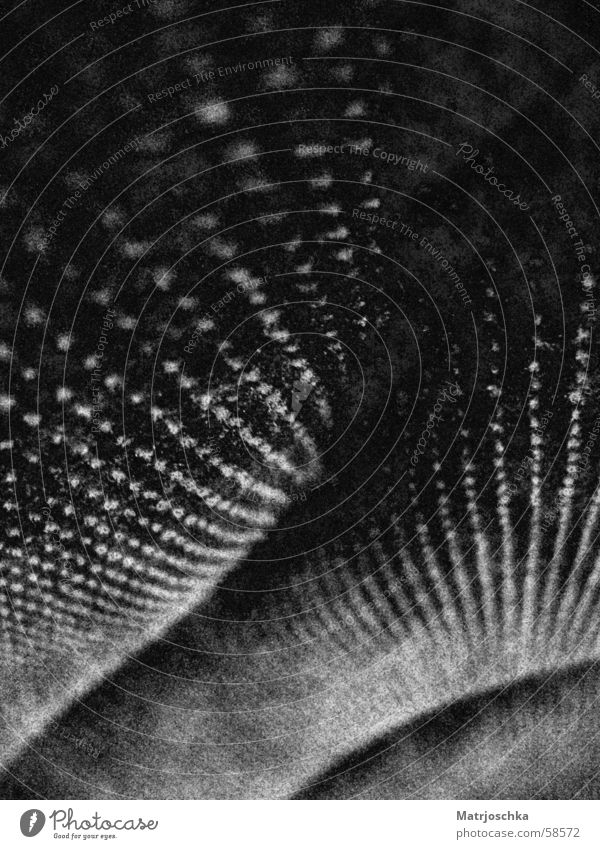 Polsterlandschaft Sessel Kino Kinosessel abstrakt Makroaufnahme Schattenspiel Lichtspiel Design Punkt Strukturen & Formen Perspektive Dynamik Landschaft Linie