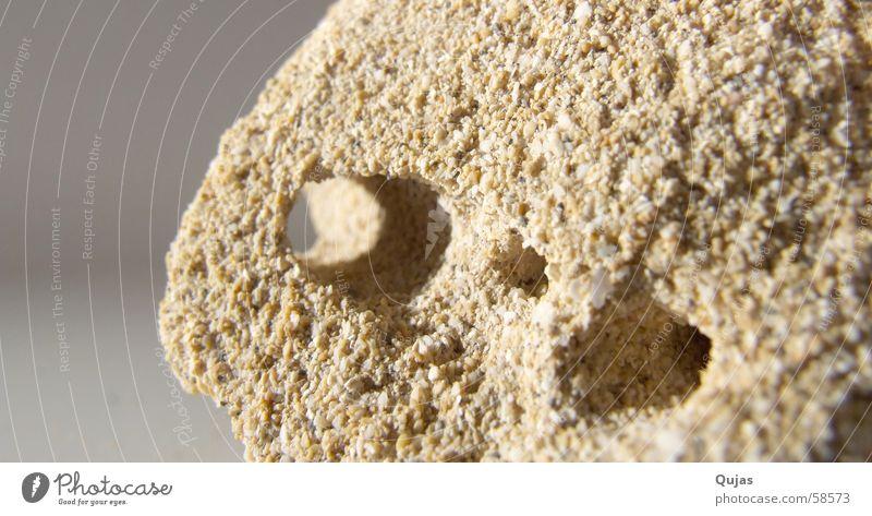 Sandwurmloch Strand Stein klumpen Loch klebrig
