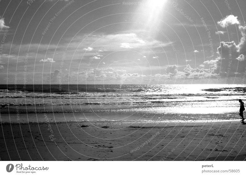 Tag am Meer Wasser Sonne Strand Wolken Erholung Sand Wellen Spaziergang