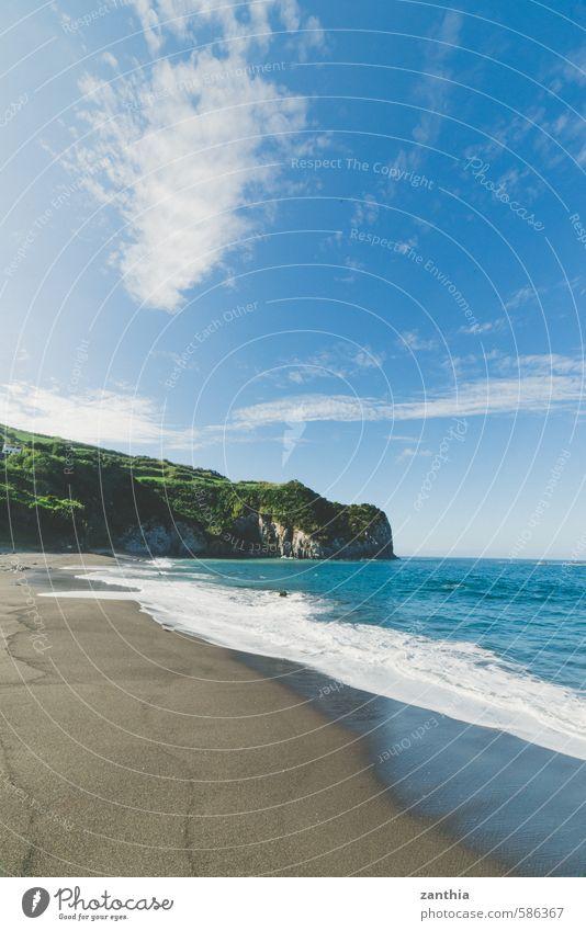 Strand Natur Ferien & Urlaub & Reisen grün Wasser Sommer Meer Erholung Landschaft ruhig Küste Sand Idylle Schönes Wetter Blauer Himmel Azoren