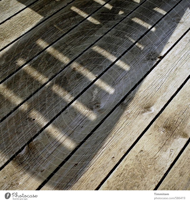 Auf Liegen liegen. Ferien & Urlaub & Reisen Dänemark Ferienhaus Terrasse Holz ästhetisch einfach grau Gefühle Freude ruhig Erholung Schatten Holzfußboden