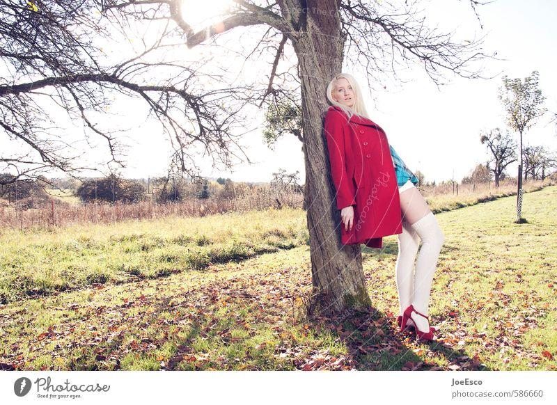 #586660 Stil Abenteuer Freiheit Sonne Garten Frau Erwachsene Leben 1 Mensch Natur Pflanze Baum Wiese Feld Mode Strümpfe blond beobachten Erholung festhalten