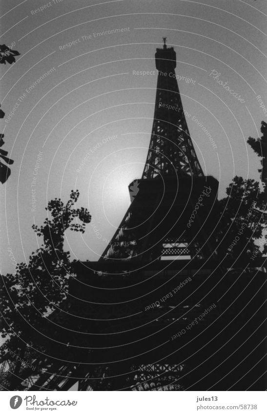eifelturm Tour d'Eiffel Paris Frankreich Sträucher Baum Licht Gegenlicht Froschperspektive Schwarzweißfoto Schatten Architektur