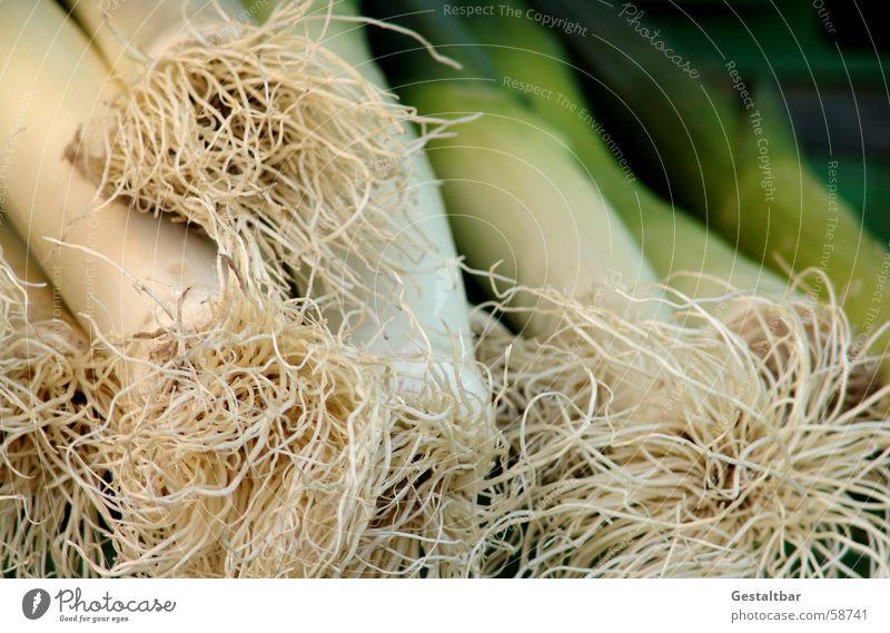 Lauch für alle grün frisch Gemüse Markt Stab Wurzel Zwiebel Porree Suppengrün