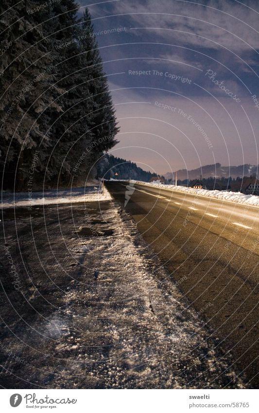 Bright Road Himmel weiß blau schwarz Wolken Ferne Straße Wald dunkel Schnee Freiheit Landschaft hell Beleuchtung offen Ehrlichkeit