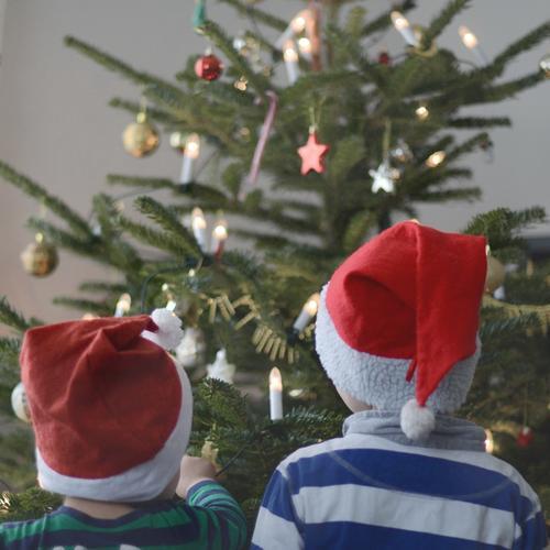 Zwei Wichtel Feste & Feiern Weihnachten & Advent Mensch Kind Kleinkind Junge 2 1-3 Jahre 3-8 Jahre Kindheit Winter Baum Mütze Gefühle Glück Fröhlichkeit