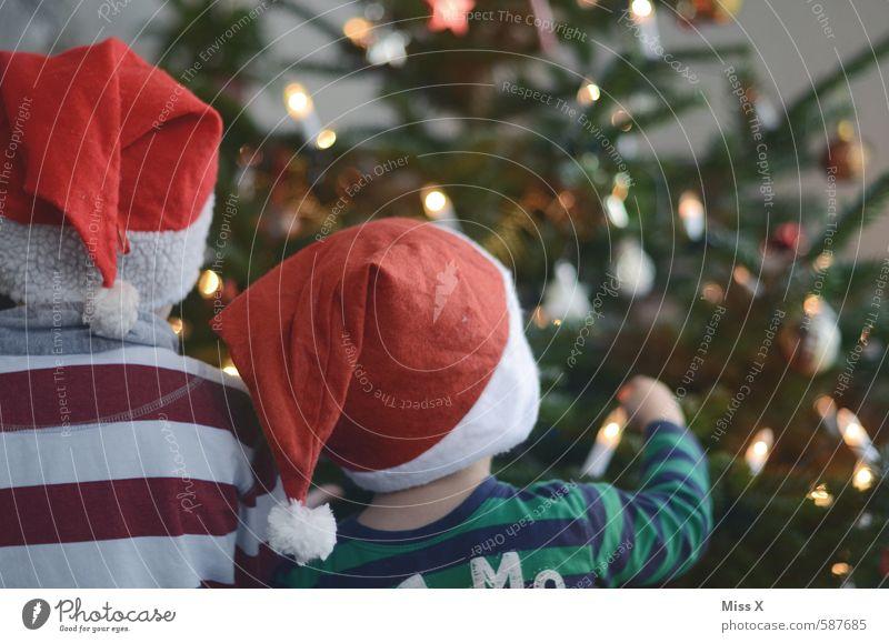 Wichtelmänner Mensch Kind Weihnachten & Advent Gefühle Spielen Feste & Feiern Stimmung Freundschaft Zusammensein Familie & Verwandtschaft Kindheit leuchten niedlich Neugier Mütze Weihnachtsbaum