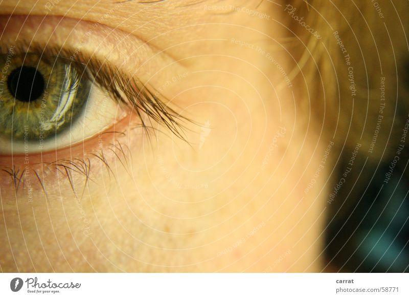 Looking for.... Wimpern Kopfhörer grün braun weiß türkis Mann Makroaufnahme Auge Haare & Frisuren Detailaufnahme Haut Reflexion & Spiegelung reflektion