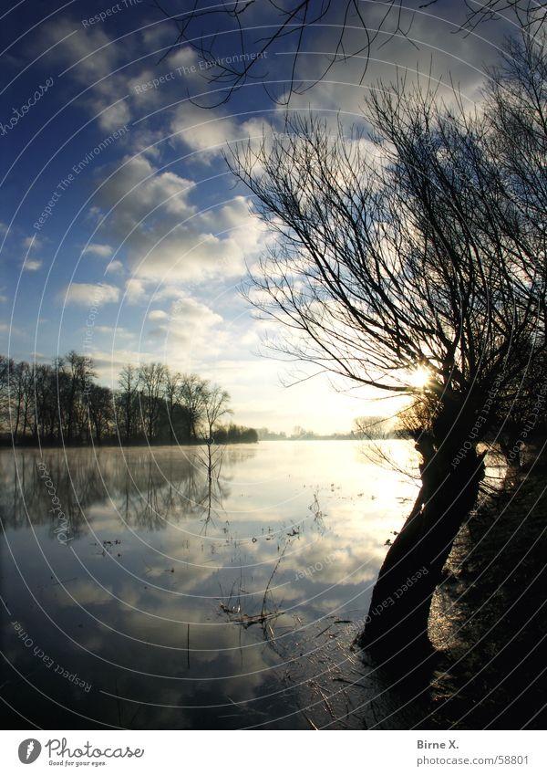 Morning has broken - Niederrhein-Version See Teich Baum Morgen Sonnenaufgang Wolken Reflexion & Spiegelung Xanten Birten Winter Morgendämmerung Himmel Wasser