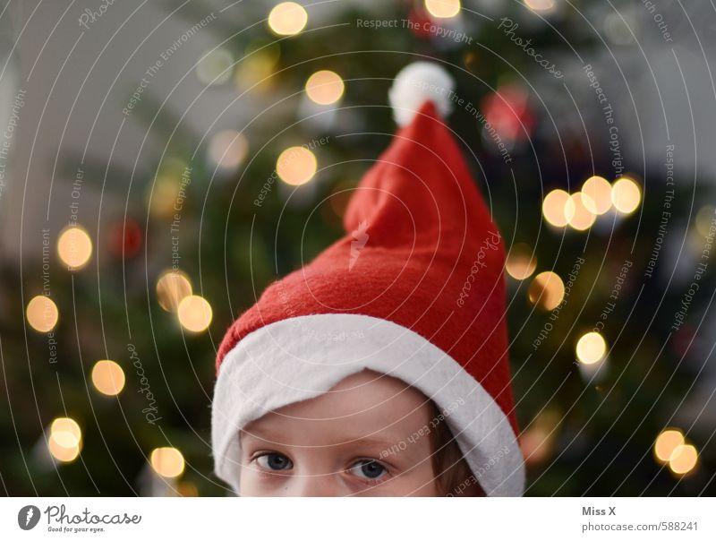 Wichtel Mensch Kind Weihnachten & Advent Auge Kopf Kindheit Spitze niedlich Neugier Mütze Weihnachtsbaum Kleinkind Weihnachtsmann 3-8 Jahre Nikolausmütze