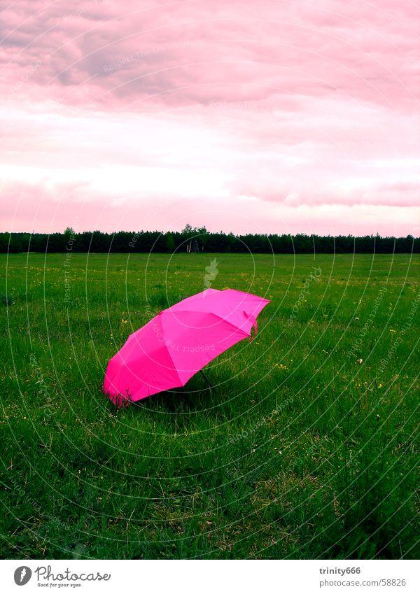 relax Himmel Wolken Erholung Wiese träumen rosa Regenschirm seltsam Humor satt fade Ironie