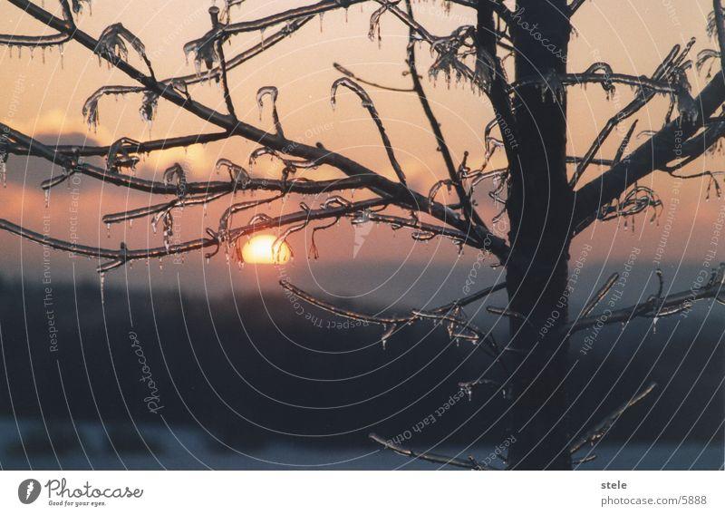 Morgenrot Winter Morgendämmerung eis sonne
