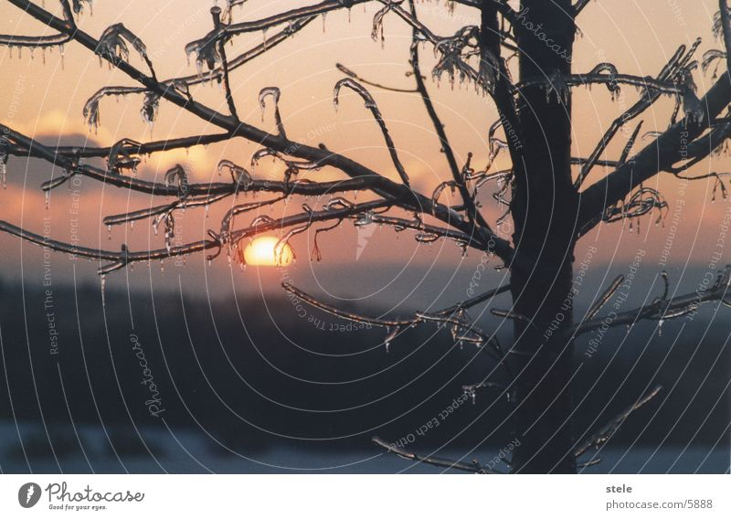 Morgenrot Winter