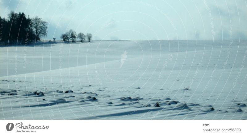 immer wieder winter Winter Schnee Landschaft