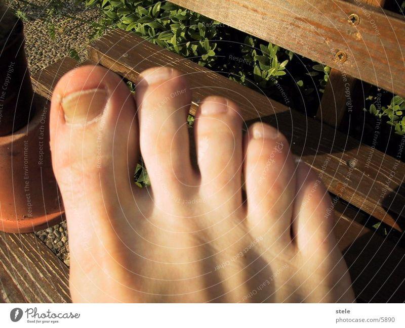 Fußzehen Zehen Mensch Barfuß