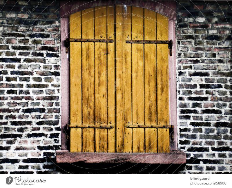 Zu Fenster Holz Mauer Backstein Altbau Fensterladen Holzmehl