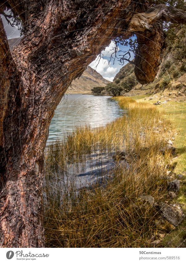 Gebirgssee in den Bergen Perus Natur Ferien & Urlaub & Reisen Wasser Pflanze Sommer Sonne Baum Landschaft Wolken Ferne Berge u. Gebirge Wiese Herbst Frühling