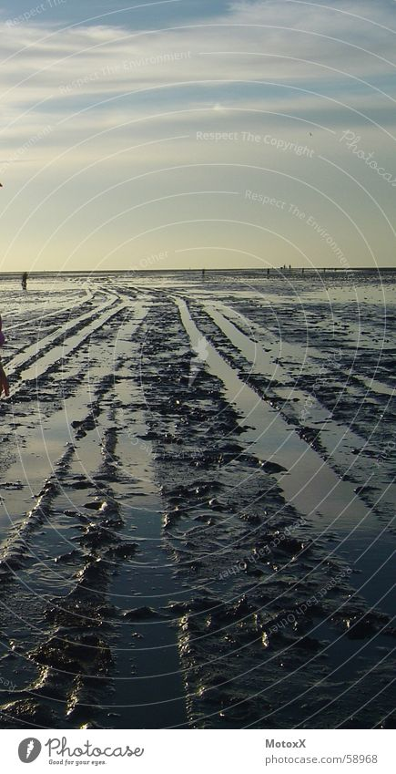 Wat'n Watt Meer Strand Deutschland Nordsee Wattenmeer Ebbe