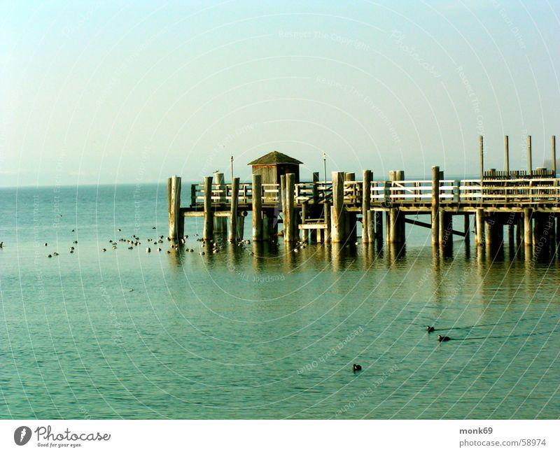 Ammersee See Winter Wasser Idylle melancolie