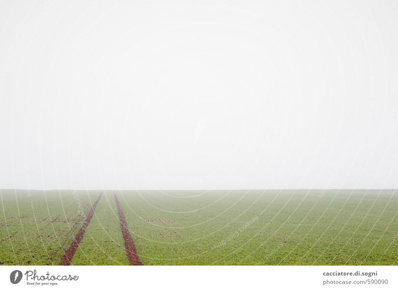 Stille Landschaft Erde Horizont Herbst Nebel Feld Linie einfach Ferne frei Unendlichkeit trist grün weiß Vorsicht geduldig ruhig bescheiden demütig Sehnsucht