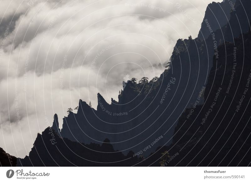 Am Abgrund Himmel Ferien & Urlaub & Reisen Baum Landschaft Wolken Ferne Berge u. Gebirge Freiheit Sand Felsen Horizont Luft Erde wild Sträucher Perspektive